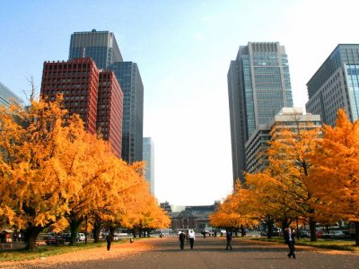 Marunouchi Business District for Japan Travel Packes (JapanTravelPackages.com)