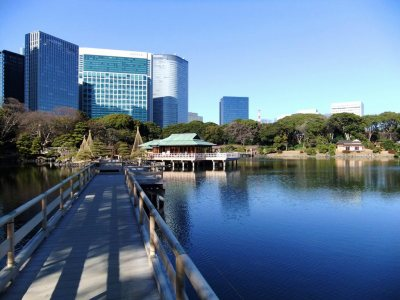 Hamarikyu Gardens for Japan Travel Packages (JapanTravelPackages.com)
