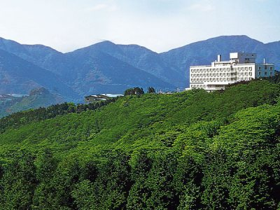 Palace Hotel Hakone for Japan Travel Packages (JapanTravelPackages.com)